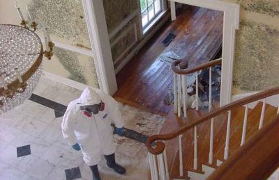 house pest inspection melbourne