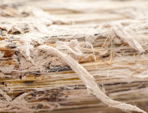 Asbestos Removal – What You Should Know