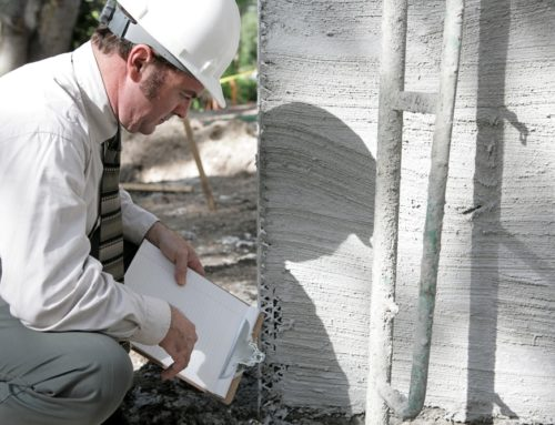 What Do Building and Pest Inspectors Look For?